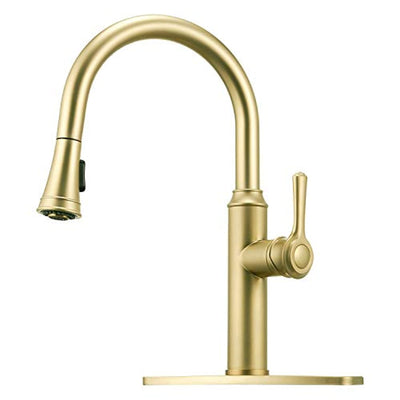 Peppermint Kitchen Sink Faucet Champagne Gold Single Handle with Pull Down Sprayer