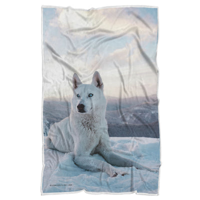 White Doggo Blue Eye Premium Sherpa Blanket