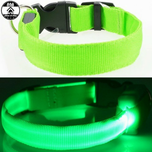 collier chien amstaff collier chien berger allemand collier chien bleu collier chien attache rapide collier chien a clip collier chien adulte Collier chien Collier chat Promener son chien de nuit Collier à LED Collier de nuit pour chat Ballader son chien de nuit  Delete product Save