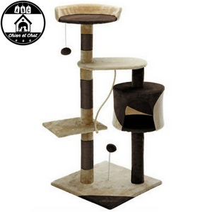 mobilier design pour chat mobilier chat meuble pour chat pas cher meuble chat pas cher meuble chat maison pour chat grand meuble pour chat grand arbre pour chat arbre pour plusieurs chats arbre a chaton arbre a chat xxxl arbre a chat xxl arbre a chat senior arbre a chat plafond arbre a chat pas cher arbre a chat maine coon arbre a chat jeune arbre a chat haut mais pas large arbre a chat géant arbre a chat grande taille arbre a chat grand arbre a chat fixation au plafond