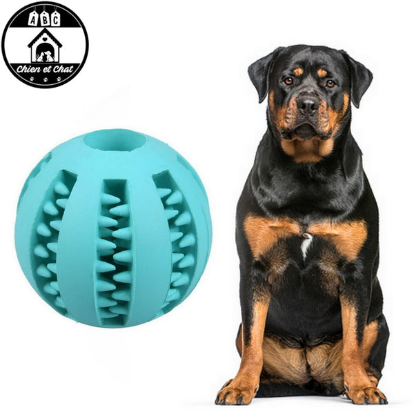 jouet indestructible pour gros chien pitbull amstaff américan staff staffy bull terrier molosse Balles à mâcher pour chien balle pour gros chien balle pour chiens balle pour chien à macher balle pour chien friandise balle pour chien en caoutchouc balle pour chien balle nettoie les dents chien balle gencives chien balle en caoutchouc balle dents chien balle chien trou au milieu balle chien recompense balle chien croquettes a l intérieur balle chien croquette balle chien jouet indestructible