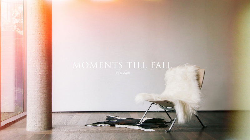 MOMENTS TILL FALL