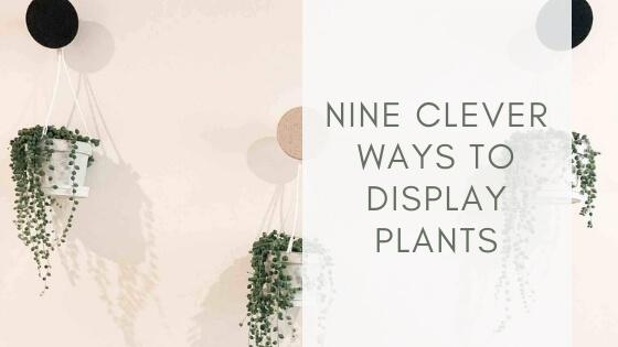 Nine ways to display plants when you run out of space | Scandiscapes