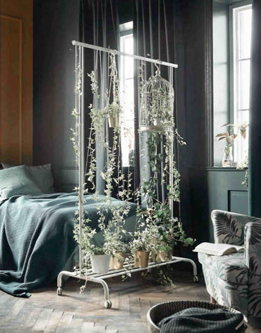 Plant display in a bedroom