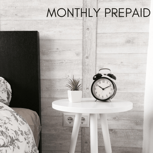Prepaid monthly succulent subscription