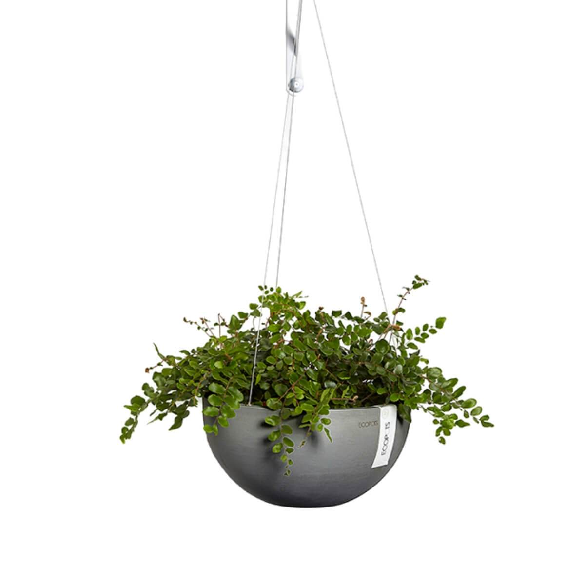 Ecopots Brussels hanging basket - Scandiscapes