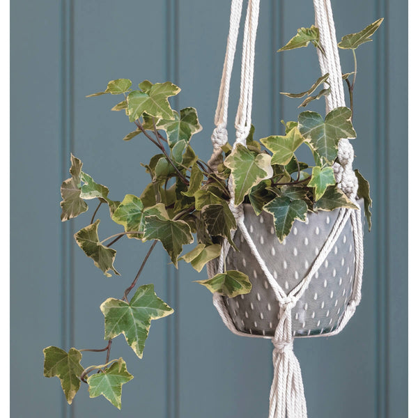 Macrame hanging planter lifestyle