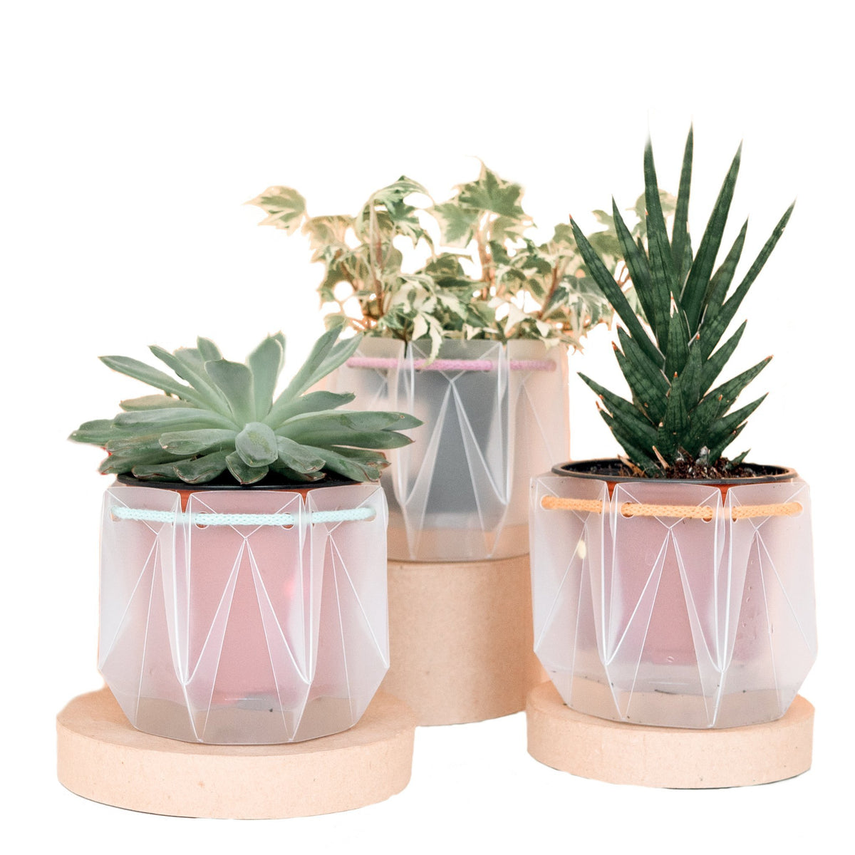 Self-watering origami planter - Scandiscapes