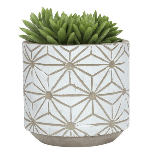 White and concrete geometric planter with succulent