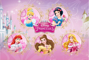 Disney Princess Background Children Girls Birthday Party Backdrops for Photo Studio