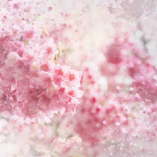 Pink Flower Baby Photography Backdrops Wedding Photo Background