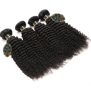 Queen Berry Malaysian Curly Wave Virgin Hair 4 Bundles Wholesale Price - Ms Virgin Hair