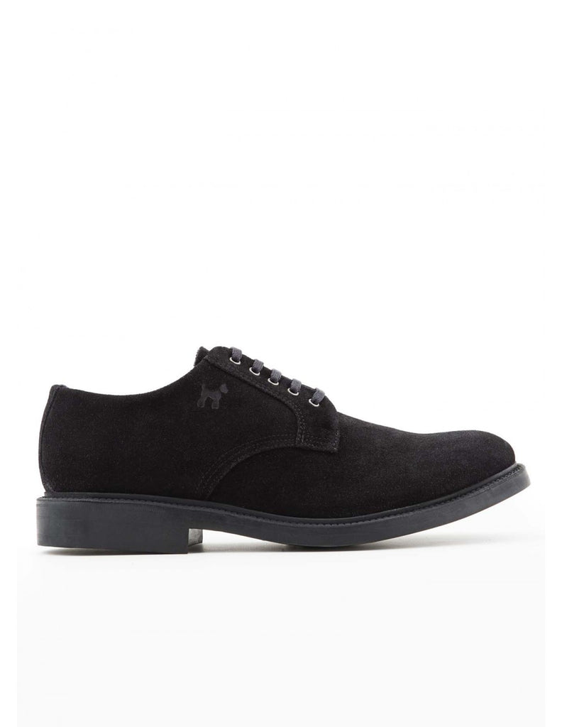 Williot Black Suede Shoe