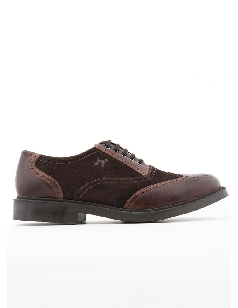 Williot Oxford Shoe - Brown