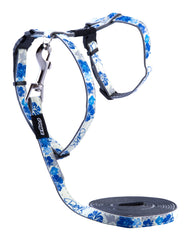 Rogz Catz GlowCat Reflective Glow-in-the-Dark Cat Lead and H-Harness Combination