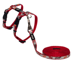Rogz Catz ReflectoCat Reflective Cat H-Harness and Lead Combination