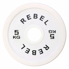 REBEL FRACTIONAL MICRO WEIGHT PLATE