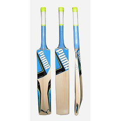 PUMA EVO POWER 2.5 CRICKET BAT