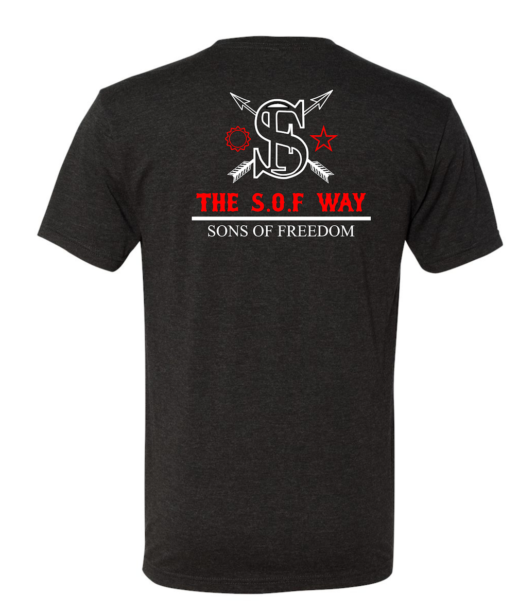 "THE ""SHAOLIN SHADOWBOXING"" TSW CHARCOAL GREY TRI-BLEND FABRIC T-SHIRT"