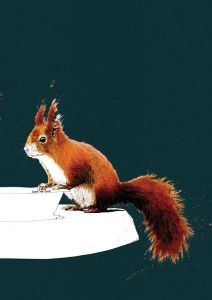 The Red Squirrel A4 Art Print - Some Ink Nice - Animal Art, Cards and Gifts