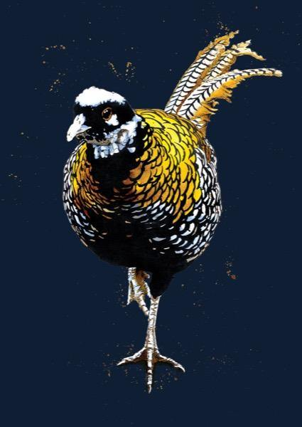 The Reeves Pheasant A4 Art Print - Some Ink Nice - Animal Art, Cards and Gifts
