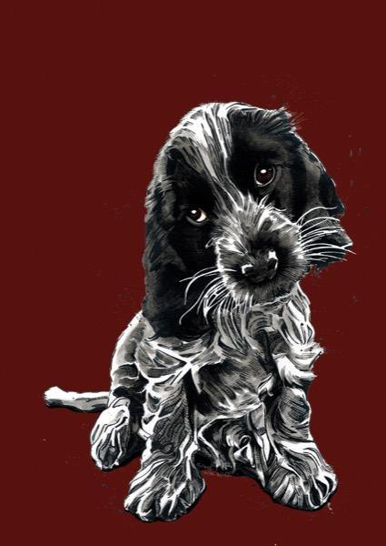 Rosie The Cocker Spaniel Art Card