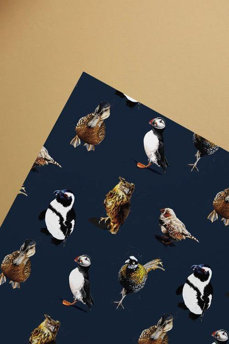 The Birds Gift Wrap Sheet - Some Ink Nice - Animal Art, Cards and Gifts