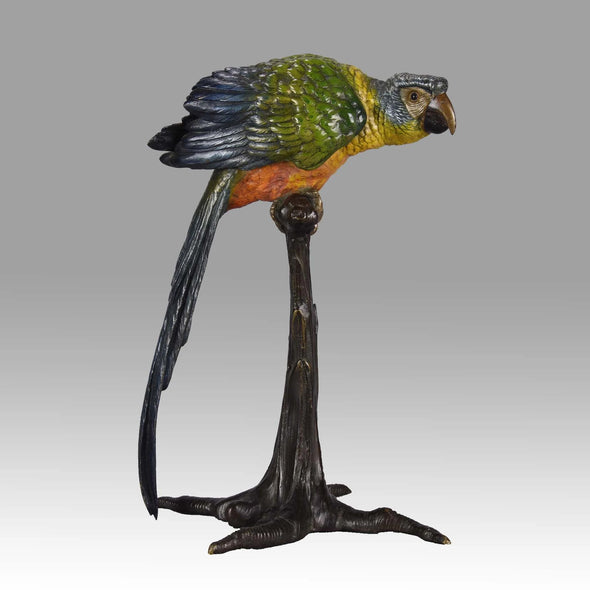 """Parrot on Branch"" by Franz Bergman"