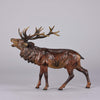 Franz Bergman Bellowing Stag