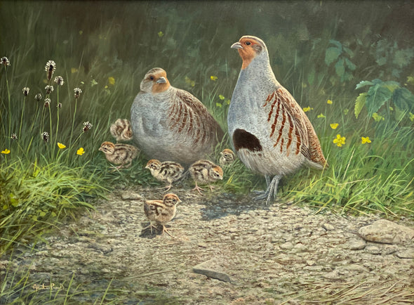 """Family of Grouse"" by Alastair Proud"