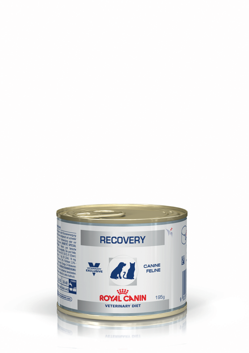 Royal Canin Recovery for Dogs and Cats