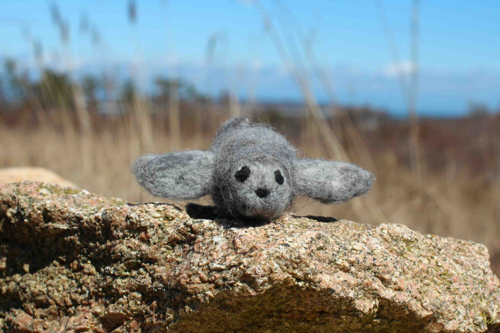 Harbor Seal Needle Felting Kit