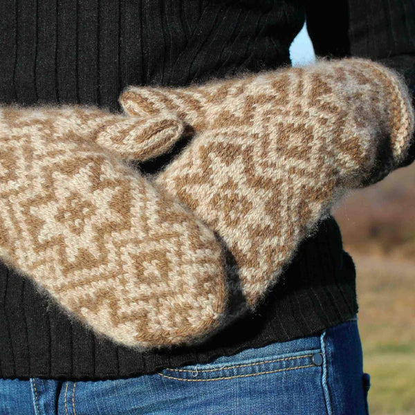Norwegian Star Mittens by Deborah Newton