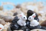 10pcs bunnies mixed garden miniatures cute crafts figurines garden decoration small white rabbit bunny