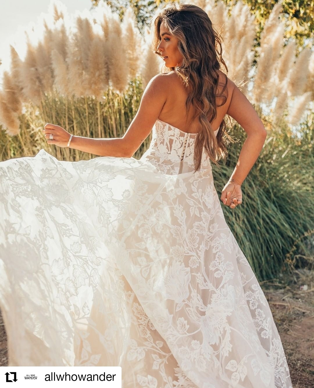 Wedding Gowns Auckland: Couture Weddings Dresses