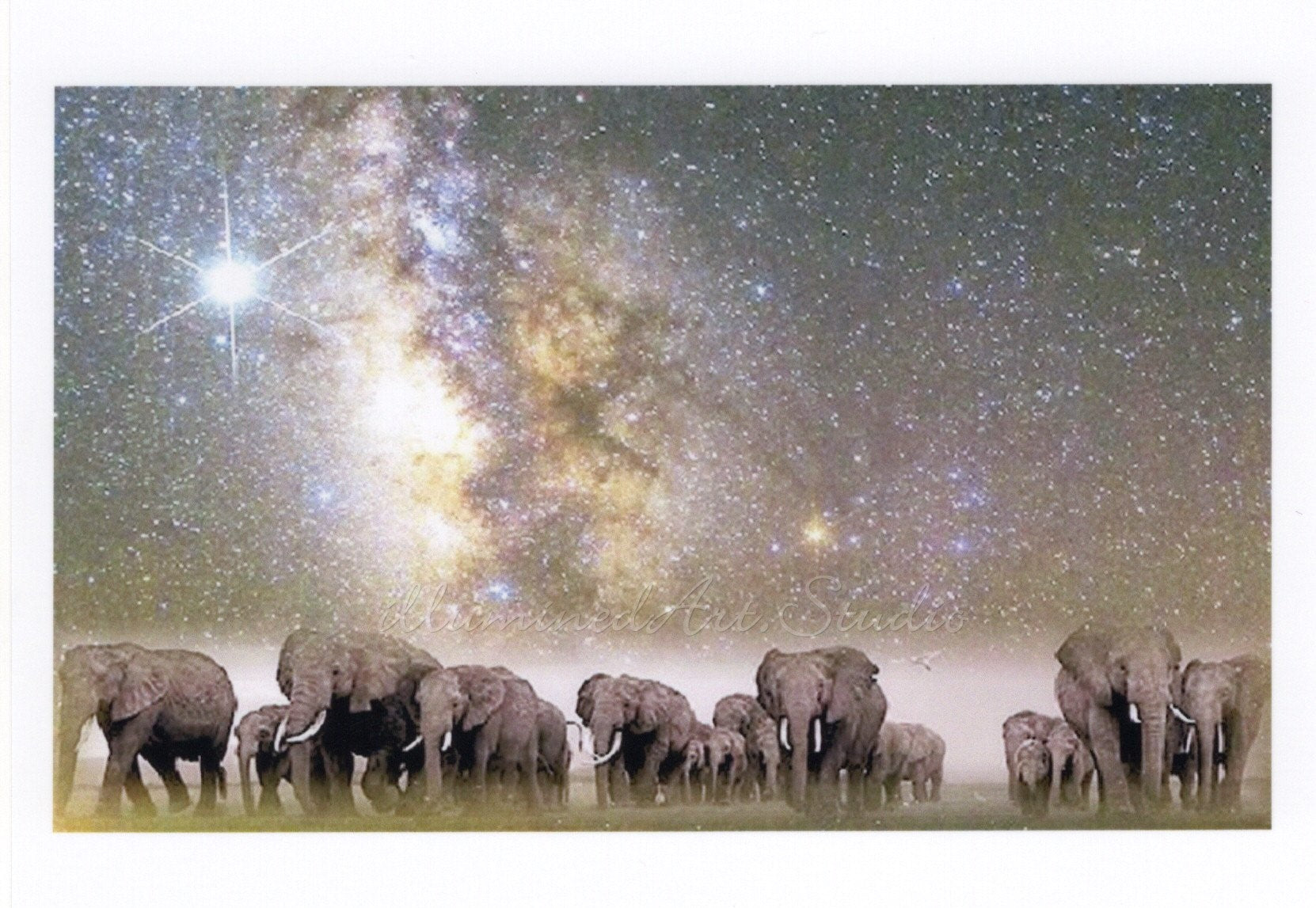 Elephants' Journey