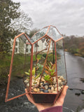 Terrarium workshop - Sunday 14th April 2019