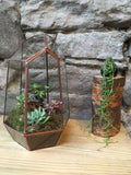 Terrarium workshop - Sunday 24th March 2019