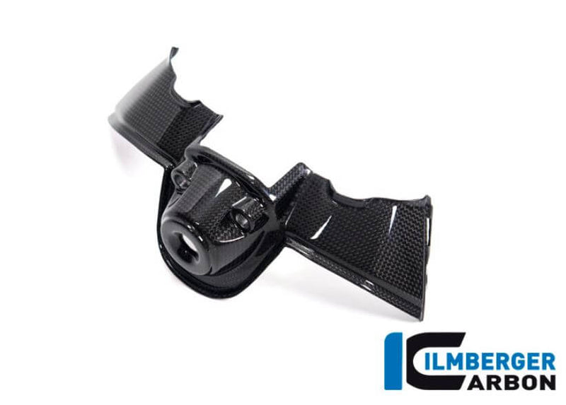 ILMBERGER Carbon Fiber Ignition Switch Cover for Ducati Panigale V4/S