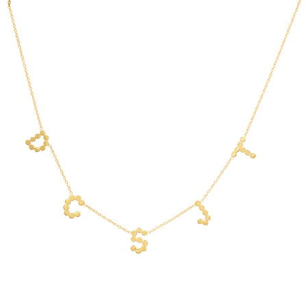 Dana Seng Signature Capricorn Zodiac Necklace