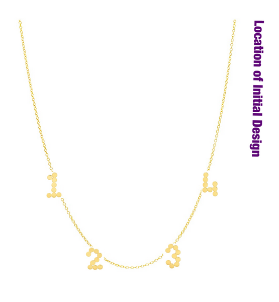 (3 Gold Initials + 1 Diamond Initial) DSJ's Signature Meaningful Multi Initial Necklace