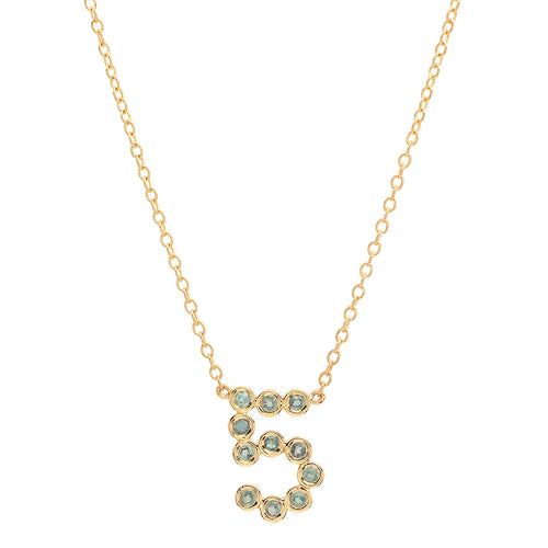 DSJ's Signature Meaningful Number & Birthstone Necklace