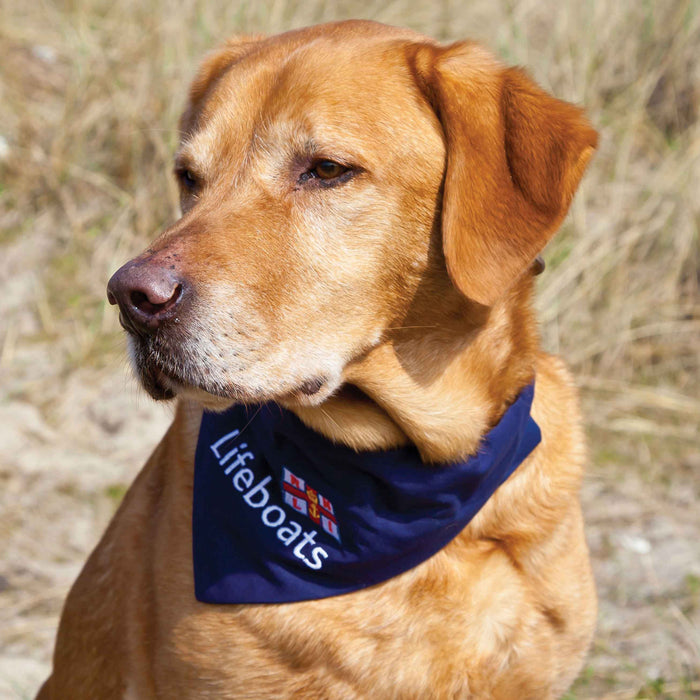 Lifeboat Dog Bandana Navy