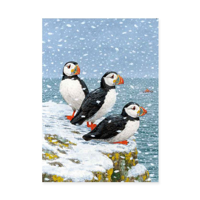 Snowy Puffins, Pack of 10 Christmas Cards