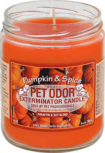 Candle - Pet Odor Exterminator - Pumpkin & Spice