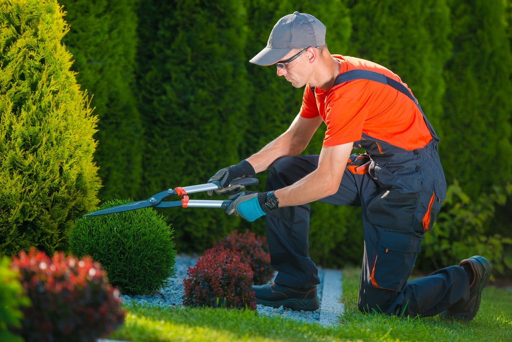 How to Landscape Your Home to Help Prevent Burglaries