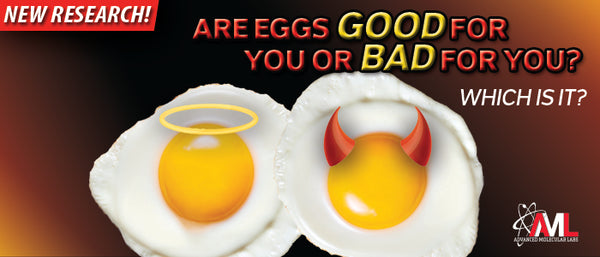 ARE EGGS GOOD FOR YOU OR BAD FOR YOU? Which Is It?