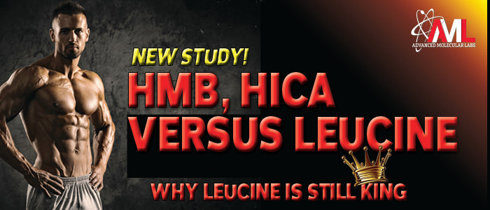 HMB, HICA VERSUS LEUCINE: Why Leucine Is Still King!