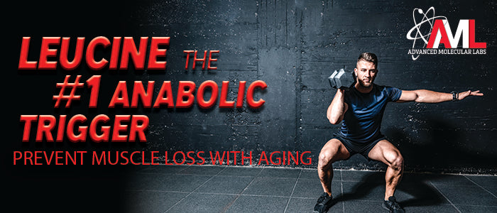 LEUCINE: THE #1 ANABOLIC TRIGGER! Prevent Muscle Loss With Aging