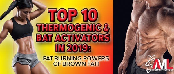 TOP 10 THERMOGENIC & BAT ACTIVATORS IN 2019: Fat Burning Powers Of Brown Fat!